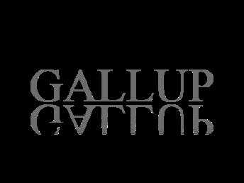gallup3