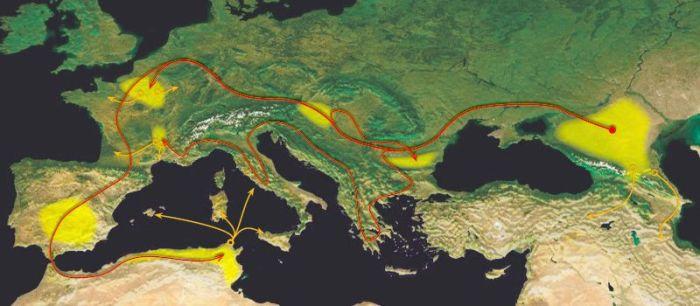 مسر لشکرکشی ها (سرخ) و اسکان (زرد) آلان ها، قرن اول تا ششم میلادی