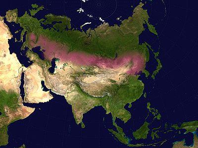 کمربند استپ های اورآسیا - مسیر اصلی کوچ های قومی سده های میانه از شرق به غرب